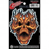 Planet Waves Guitar Tattoo, Flame Whip Skull