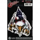 Planet Waves Guitar Tattoo, Rip N Tear Eagle