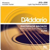 EJ19 Phosphor Bronze, Bluegrass, 12-56