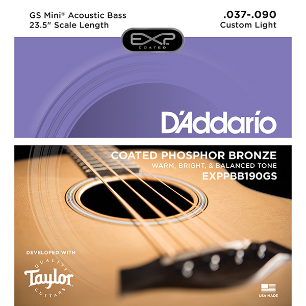 Acoustic Bass Taylor GS Mini Custom String EXPPBB190GS