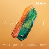 VIOLA STRING ASCENTE SET